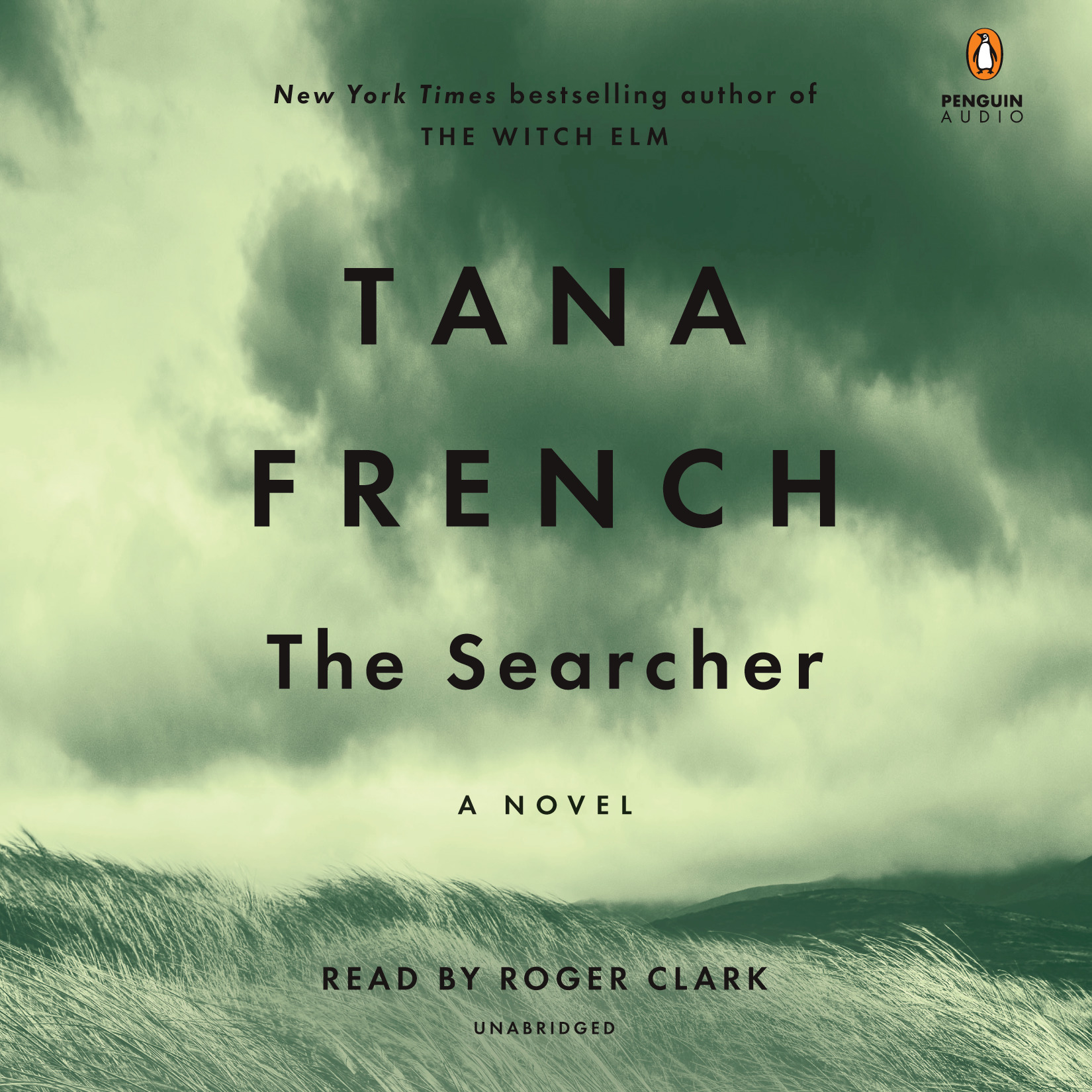 image for The Searcher: A Novel