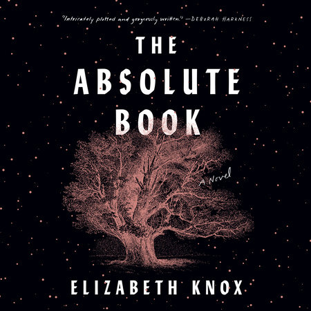 image for The Absolute Book: A Novel